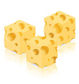 cheese 05 vector image vector image