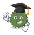 graduation durian character cartoon style vector image