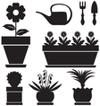 Pot plants vector image