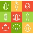 Vegetables in Line Art Style vector image