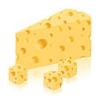 cheese 06 vector image vector image