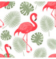seamless pattern with red flamingo vector image