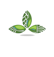 Green leaf concept vector image vector image