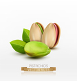 pistachios peeled or in shell isolated vector image vector image