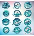 Summer Surfing Labels Badges Emblems and vector image