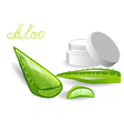 aloe leaves and cream vector image