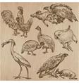 birds animals around the world - an hand drawn vector image
