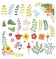 Vintage flowers setFlowersbranchesberries vector image
