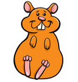 hamster animal character cartoon vector image