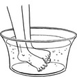 feet in a wash basin scratching each other vector image