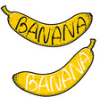 Set of 2 bananas with the word handmade Doodle vector image