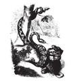 Boa constricting a jaguar vintage vector image