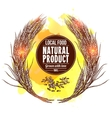 Wheat Wreath vector image