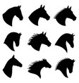 horse head silhouettes vector image