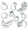 fruit doodle set vector image