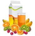fruit juice cup vector image