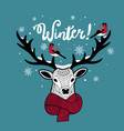 cartoon deer in scarf with bullfinches on his horn vector image