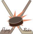 Flying Pucks vector image