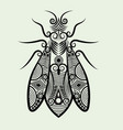Decorative bee vector image vector image