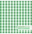 gingham green vector image