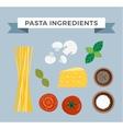 Pasta ingredients vector image