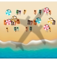 Summer beach with sunbathing people vector image