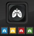 Lungs icon symbol Set of five colorful stylish vector image