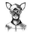 hand drawn toy terrier hipster vector image