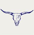 Head skull of bull Vector Image