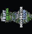 Food dehydrators text background word cloud vector image
