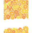 template design cover sliced halves of citrus vector image