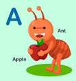 isolated animal alphabet letter a-ant apple vector image