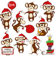 Set Of Isolated Funny Monkey Icons vector image