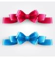 Blue and pink holiday ribbon vector image