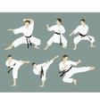 Karate icon set vector image