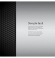 brushed metal panel on black mesh with sample text vector image vector image