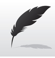 Feather with shadow vector image
