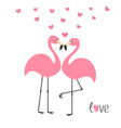 Pink flamingo couple and hearts Word love Exotic vector image