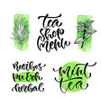 tea shop menu calligraphic phrase for cover vector image