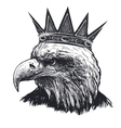 Detailed hand drawn eagle vector image
