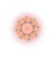 flower Eps10 vector image