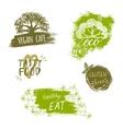 Retro style set of bio organic gluten free eco vector image