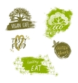 Retro style set of bio organic gluten free eco vector image