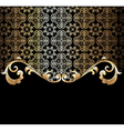 background with a gold vector image vector image