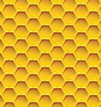 Honeycomb colorfull Seamless pattern honeycombs vector image