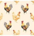 Watercolor cock rooster pattern vector image vector image