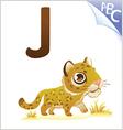 Animal alphabet for the kids J for the Jaguar vector image
