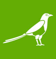 bird magpie icon green vector image