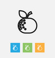 of food symbol on citrus vector image