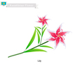 Beauitful Lily The Popular Flower of Kazakhstan vector image